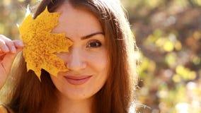 Piękni kobieta chwyty w ręka liściu klonowym w jesień słonecznym dniu w lesie z żółtymi i złotymi liśćmi zbiory