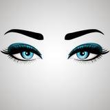 Piękni kobiety ` s oczy również zwrócić corel ilustracji wektora Realistyczni niebieskie oczy z modnymi rzęsami Fotografia Royalty Free