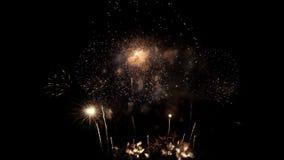 Piękni kolorowi fajerwerki na świętowanie dniu zdjęcie wideo