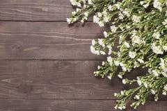 Piękni krajaczy kwiaty są na drewnianym tle Zdjęcia Stock