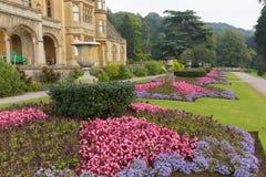 Piękni kwiatów ogródy przy Tyntesfield domem blisko Bristol Somerset Anglia północnego UK Wiktoriańskiego dworu Zdjęcia Royalty Free