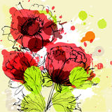 piękni kwiaty Obrazy Stock