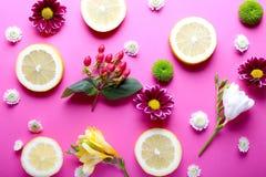 Piękni kwiaty i cytryna pokrajać rozrzuconego na różowym tle, Fotografia Stock