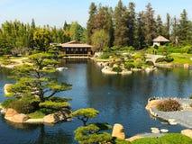 Piękni kwiaty i drzewa w japończyka ogródzie Zdjęcia Stock