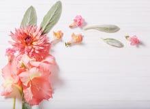 Piękni kwiaty na białym drewnianym tle Obraz Stock