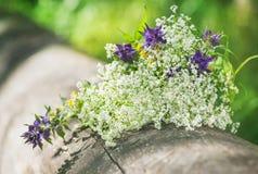 Piękni kwiaty na starym drewnie Obrazy Royalty Free