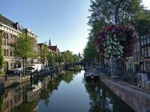 Piękni kwiaty nad wodnym kanałem zdjęcia royalty free