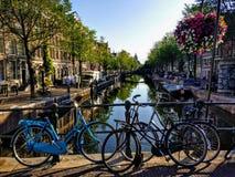 Piękni kwiaty nad wodnym kanałem z rowerami zdjęcia stock