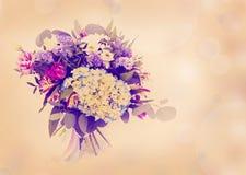 Piękni kwiaty robić z kolorów filtrami Fotografia Royalty Free