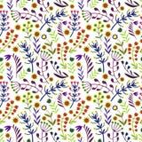 Piękni kwiaty ustawiający, Wektorowy bezszwowy wzór Fotografia Stock