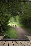 Piękni młodzi wiosna baranki bawić się w Angielskiej wsi lądują Zdjęcia Stock