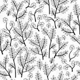 Piękni monochromów kwiaty ustawiają, Wektorowy bezszwowy wzór Zdjęcie Stock