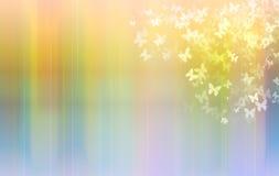 Piękni motyle lata słońce na tęczy tle Zdjęcia Stock