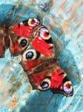 Piękni motyle pawi obsiadanie na drewnianej błękitnej farbie Zdjęcie Royalty Free