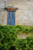 Piękni okno i balkony - Verona 13 obraz royalty free