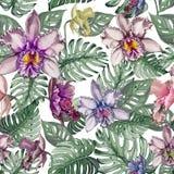 Piękni orchidea kwiaty i monstera liście na białym tle Bezszwowy tropikalny kwiecisty wzór adobe korekcj wysokiego obrazu photosh Fotografia Stock