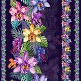 Piękni orchidea kwiaty i monstera liście w liniach prostych na ciemnym purpurowym tle Bezszwowy tropikalny kwiecisty wzór Obrazy Stock