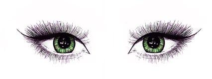 Piękni otwarci żeńscy oczy z długimi rzęsami odizolowywają na białym tle Makeup szablonu ilustracja handwork Obraz Royalty Free