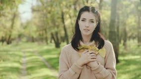 piękni portreta kobiety potomstwa brunetka Dziewczyna w pulowerze i jesień liściach w jej rękach swobodny ruch zbiory