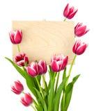 piękni pustej wiadomości znaka tulipany Zdjęcia Royalty Free