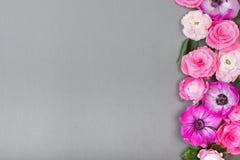 Piękni różani i biali kwiaty na szarym backgraund Pastelowy kolor Kartka z pozdrowieniami dla walentynek lub kobieta dnia kopia zdjęcie stock