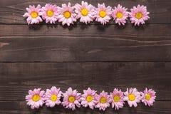 Piękni różowi kwiaty są na drewnianym tle dla designin Fotografia Royalty Free