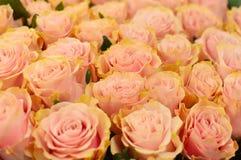 Piękni różowi rosas w kwiatu sklepie fotografia stock