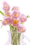 piękni różowi tulipany fotografia stock