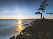 Piękni sceniczni głąbiki Vancouver i Fraser dolina zdjęcia stock