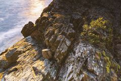 Piękni sceniczni głąbiki Vancouver i Fraser dolina zdjęcie stock