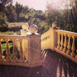 Piękni starzy schodki w lasu parku Fotografia Stock