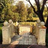 Piękni starzy schodki w lasu parku Obrazy Royalty Free