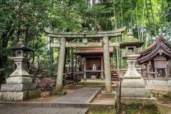 Piękni tori drylowali bramy i lampiony, Kyoto, Kansai, Japonia fotografia royalty free