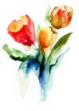 Piękni tulipanów kwiaty Zdjęcia Royalty Free