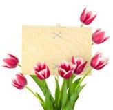 Piękni tulipany i Opróżniają znaka dla teksta, drewnianego panelu, isolat/ Obrazy Royalty Free