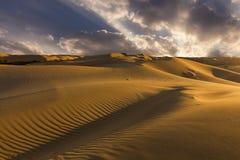 Piękni widoki dezerterują krajobraz Gobi pustynia Mongolia Obraz Royalty Free