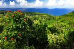 Piękni widoki Maui Północny wybrzeże widzieć od sławnej wijącej drogi Hana hawajczycy obraz stock