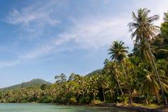 Piękni wysocy drzewka palmowe i biała piaskowata plaża Zdjęcia Stock