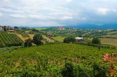 Piękni wzgórza w prowinci Teramo zdjęcie royalty free