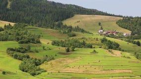 Piękni zieleni, żółci wzgórza i zbiory
