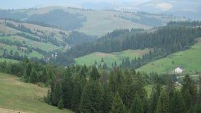 Piękni zieleni wzgórza i conifer drewno zbiory