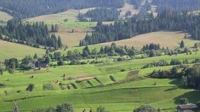 Piękni zieleni wzgórza w wiosce, Karpackie góry, Ukraina zbiory wideo