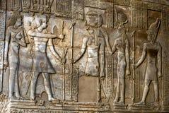 Pięknie dekorująca ściana wystawia rytownictwa i hieroglify przy świątynią Kom Ombo w Egipt Obrazy Royalty Free