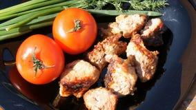 Pięknie dekorujący naczynie z kawałkami stek, pomidory i zielenie smażący, Mięsny grill lub shish kebab na czarnym naczyniu zdjęcie wideo