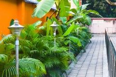 Pięknie robiący manikiur ogród z dekorującym skały droga przemian, ornamentacyjnymi roślinami i kwiatów krzakami, Trawnik przed d zdjęcia royalty free