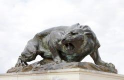Pięknie rzeźbiony srogi brązowy tygrys chroni frontowego pałac Fotografia Royalty Free