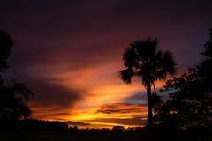 pięknie się tło charakteru wektora kolorowe słońca dramatyczne niebo Zdjęcie Stock