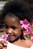 piękno afrykańskiej Zdjęcia Royalty Free