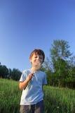 Piękno chłopiec z dandelion Fotografia Stock