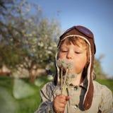 Piękno chłopiec z dandelion Zdjęcie Royalty Free